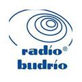 logo Radio Budrio