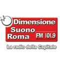 logo Radio Dimensione Suono Roma