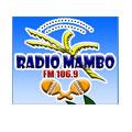logo Raio Mambo